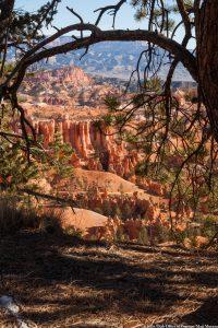 Utsikt utover Bryce Canyon Nasjonalpark