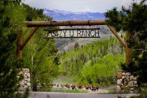 Inngangsporten til C Lazy U Ranch med hestene løpende opp veien mot porten
